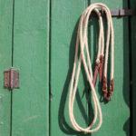Split Reins Hölderlin, Messing-Beschläge, schoko, Lederklatsche