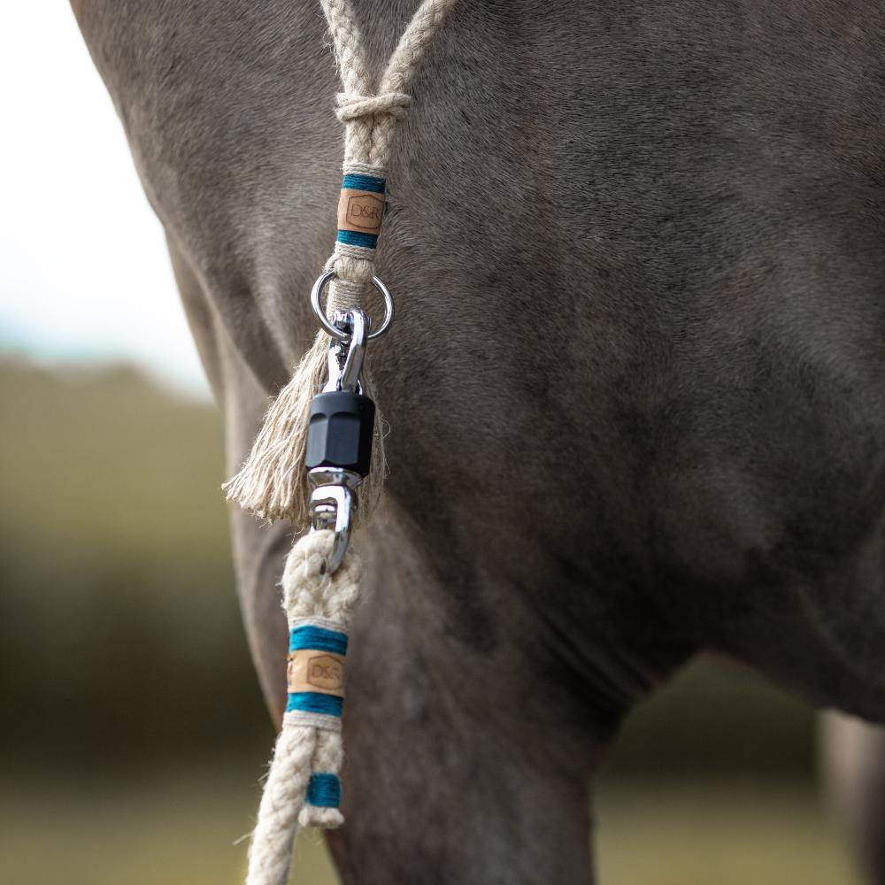 Halsring-Balancezügel-Pferd-Reiten-petrol